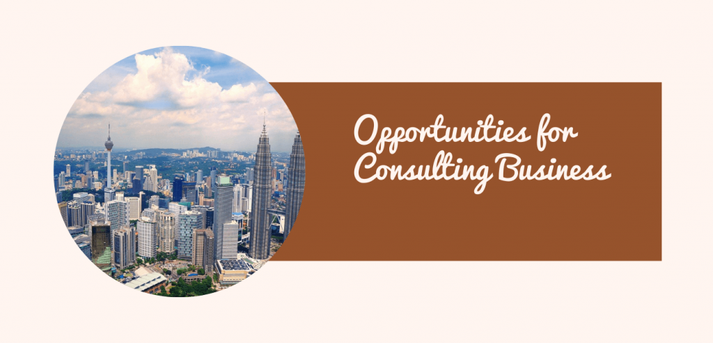 Opportunities for Consulting Business